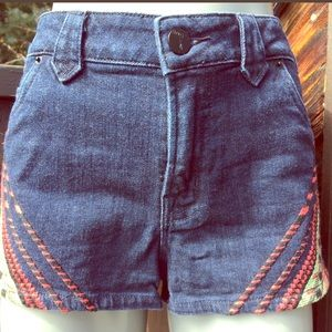 BDG urban outfitters embroidered shorts.